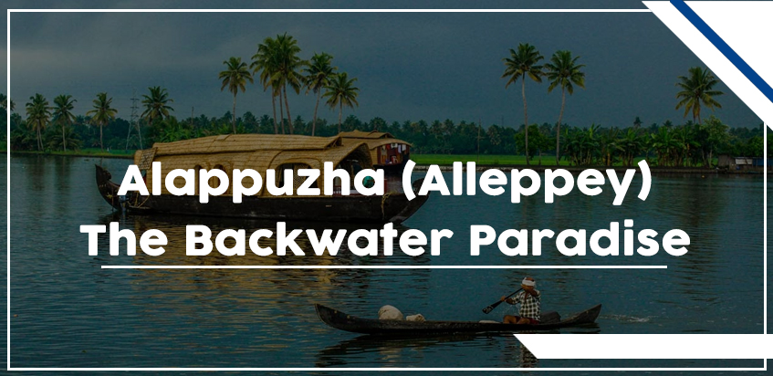 Alappuzha (Alleppey) – The Backwater Paradise