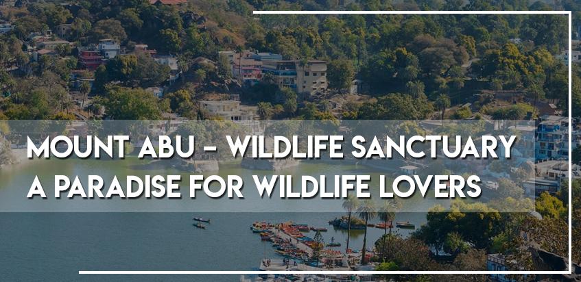 Mount Abu - Wildlife Sanctuary - A Paradise For Wildlife Lovers